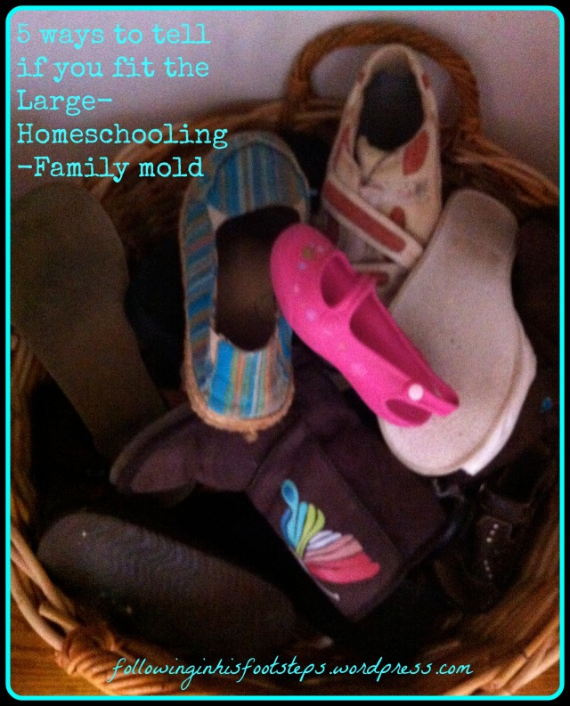 5 ways to tell if you fit the Large-Family-Homescholing mold www.followinginhisfootsteps.wordpress.com